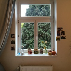 Pictures, pumpkins and flowers make my little corner feel a little more like home.